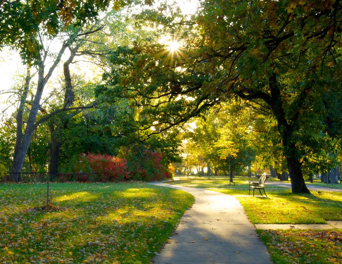 Shining Morning-Minnehaha Park
